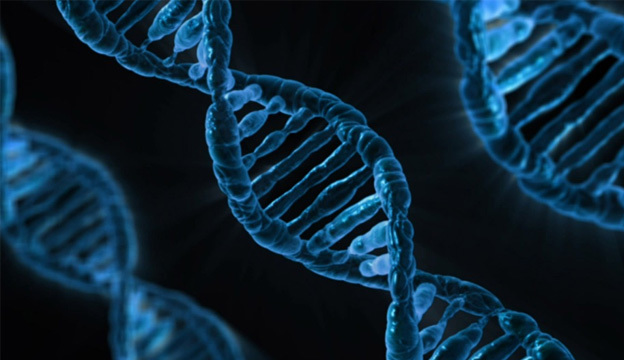 Genetic Testing of Sperm Donors